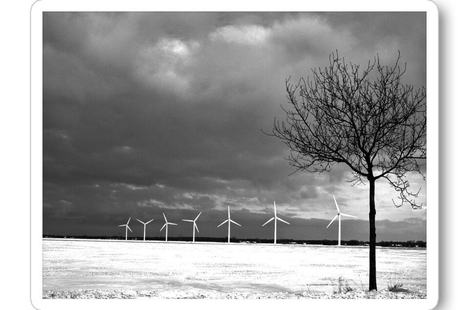 2021 Winter Biddinghuizen